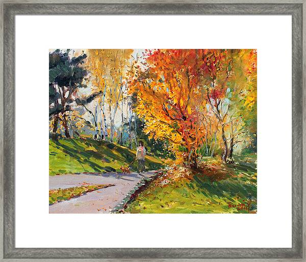Viola In A Nice Autumn Day  Framed Print