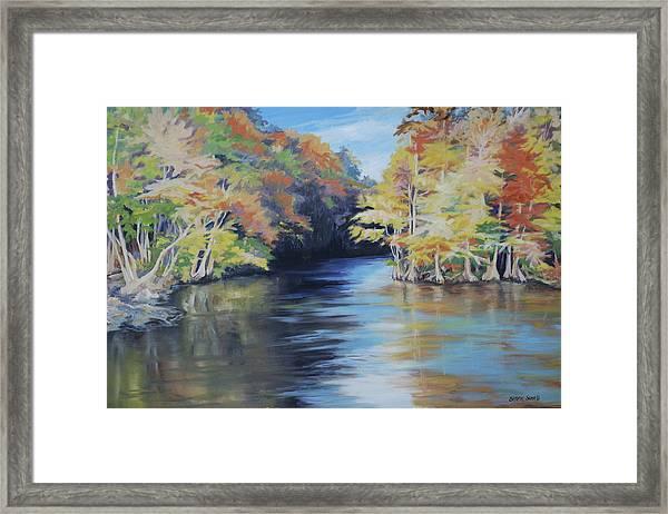 Waccamaw Autumn Framed Print