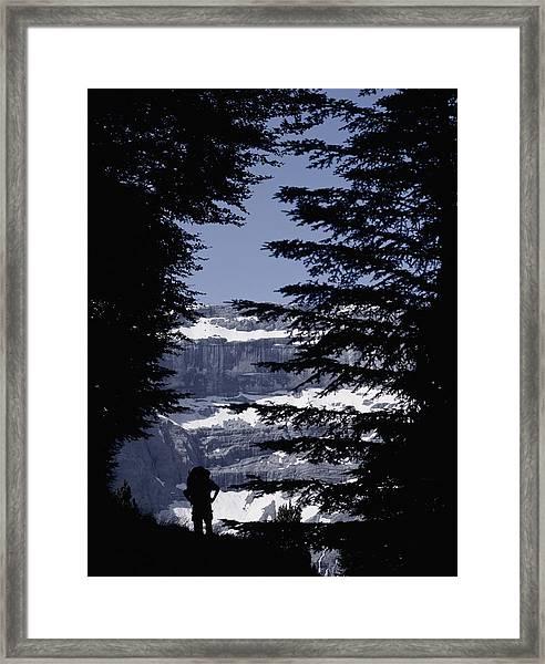 Walker Climbing Up Hill Between Trees Framed Print