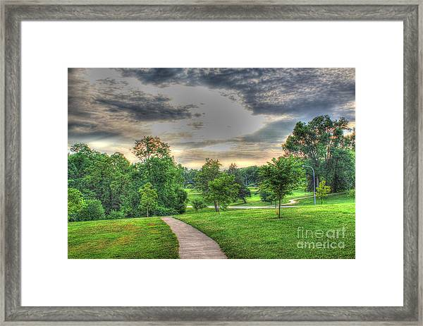Walkway In A Park Framed Print