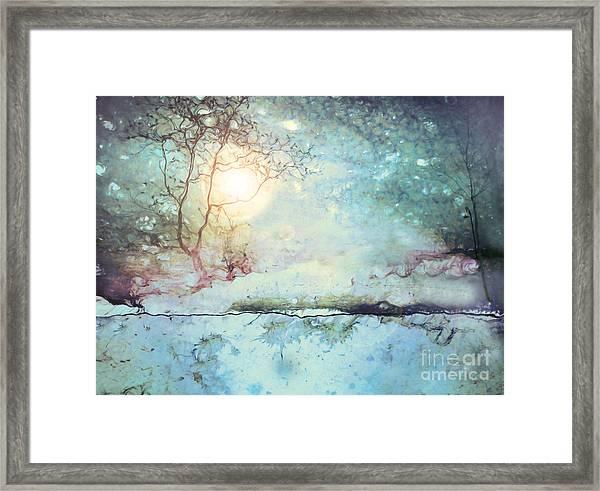 Wandering In The Light Framed Print