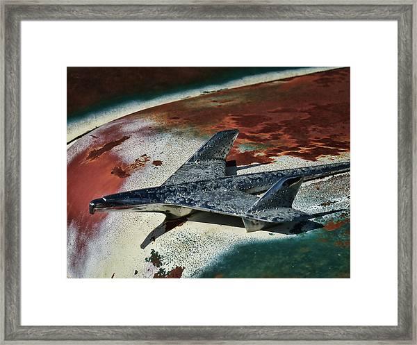 War Bird Framed Print