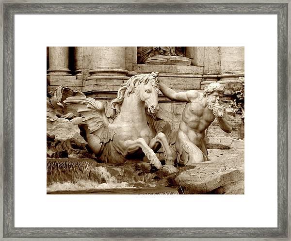 Water Stallion Framed Print