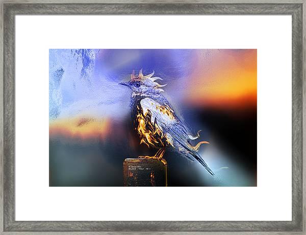 Western Bluebird Fire And Ice Framed Print