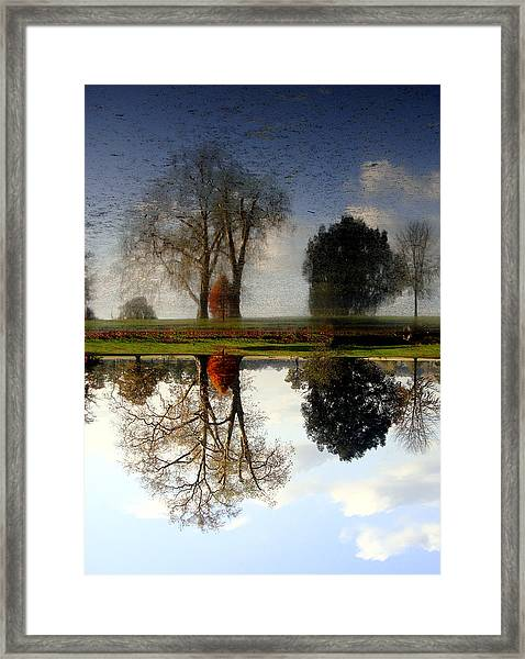 What Is Real? Framed Print
