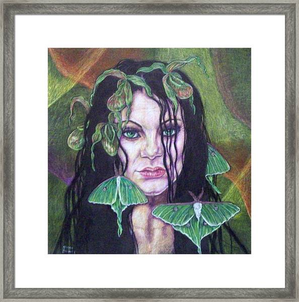 Wild Green Things Framed Print by Diana Shively