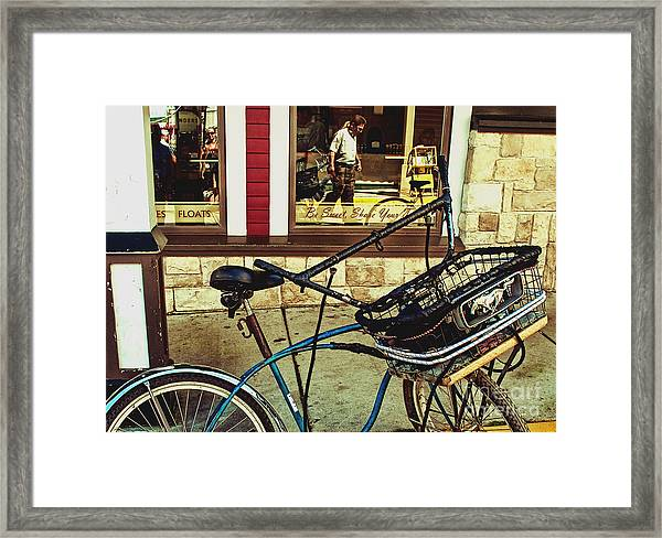 Wild Mustangs Framed Print