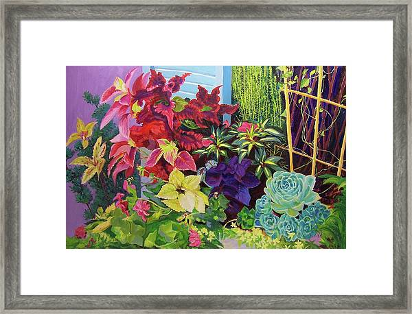 Window Sill Blooming Framed Print