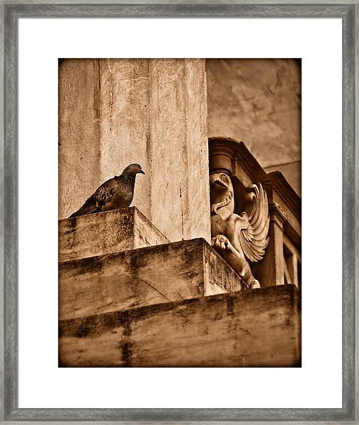 Athens, Greece - Winged Encounter Framed Print