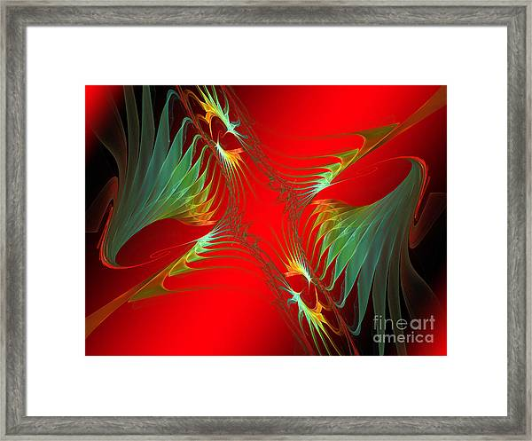 Wings Of Paradise Framed Print