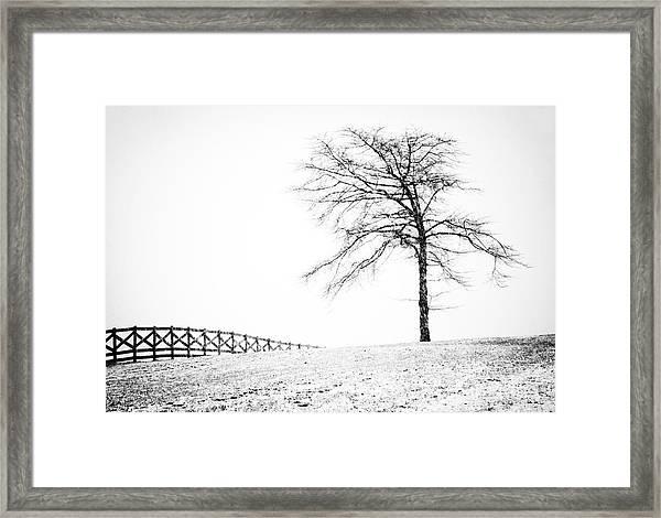 Winter In Black And White Framed Print