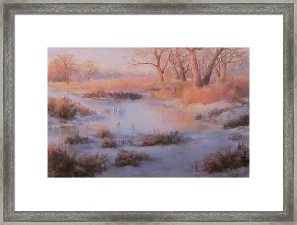 Winter Marsh Series- Fire And Ice Framed Print