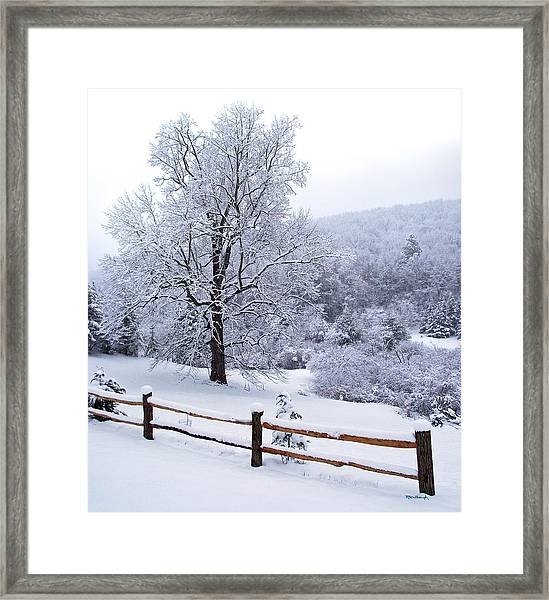 Winter Tree And Fence In The Valley Framed Print