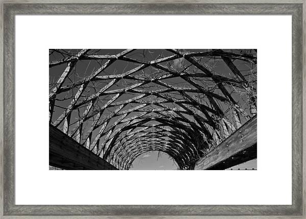 Winter Trellis Framed Print
