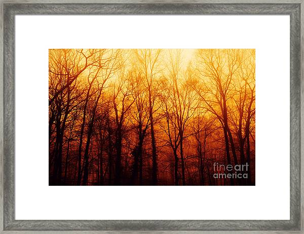 Winters Harvest Framed Print