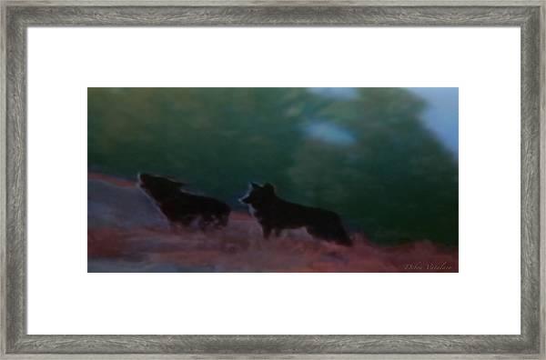 Wolves Passage Framed Print by Debra     Vatalaro