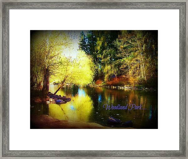 Woodland Park Framed Print