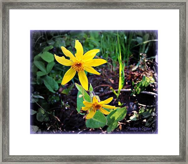 Woods Flower Framed Print