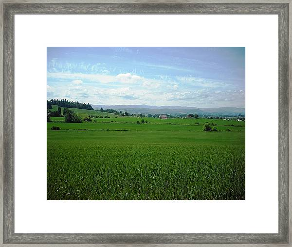 Yamhill Countryside Framed Print