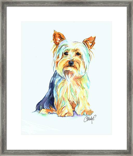 Yorkie Dog Portrait Framed Print
