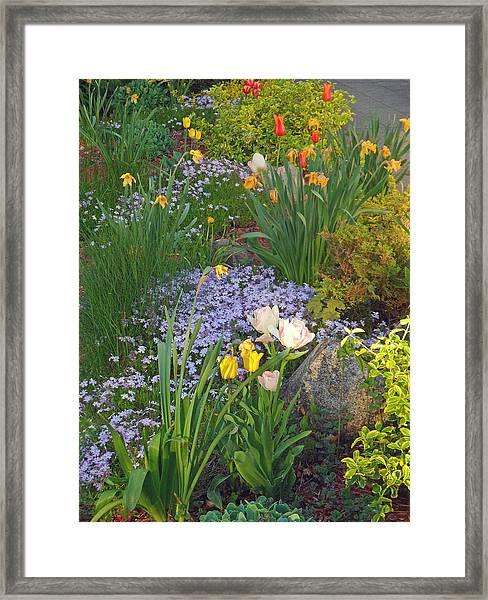 Zacks Garden - Hope Bay Campground Framed Print