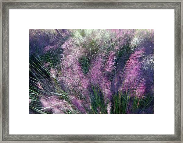 A Gentle Breeze  Framed Print