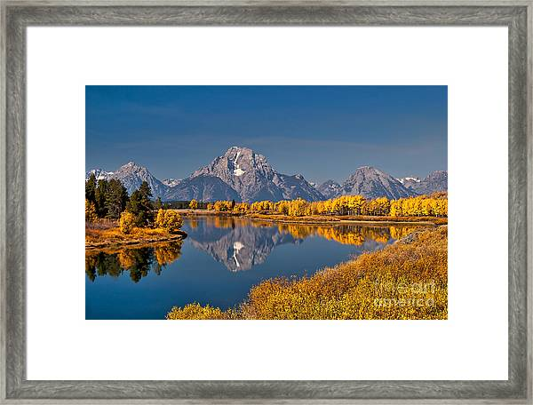 Fall Colors At Oxbow Bend In Grand Teton National Park Framed Print