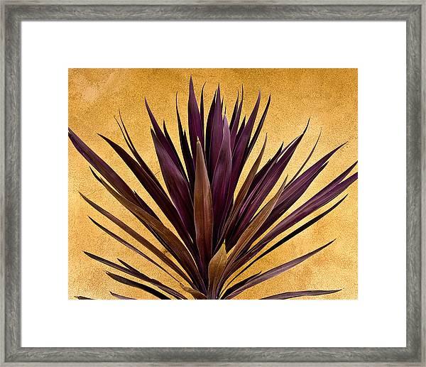 Purple Giant Dracaena Santa Fe Framed Print