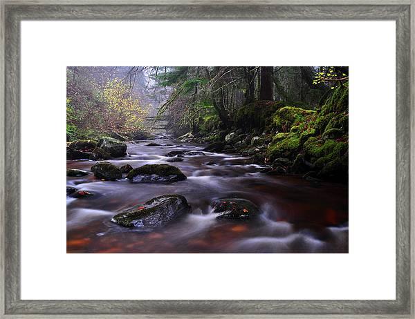 Reelig Glen Framed Print