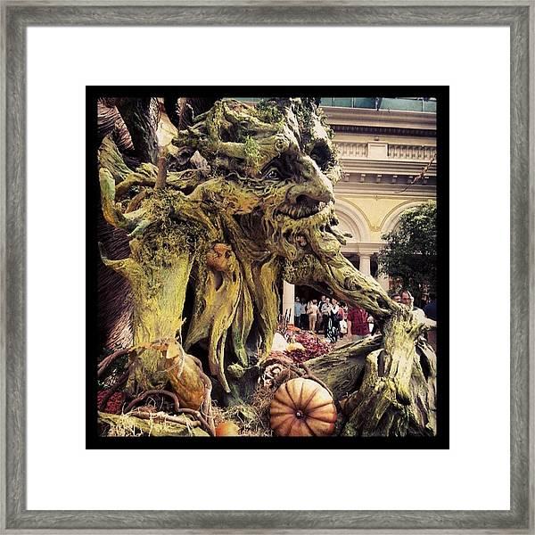 #trollgarden Framed Print