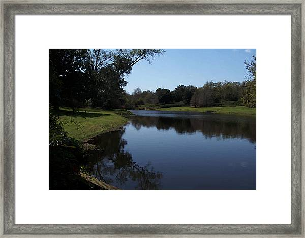 071115 Louisiana Bayou Framed Print