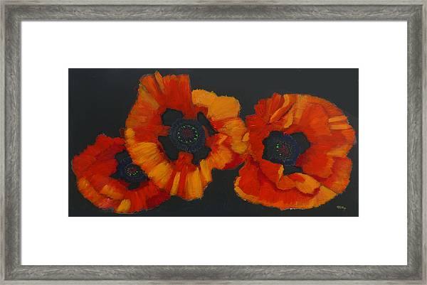 3 Poppies Framed Print
