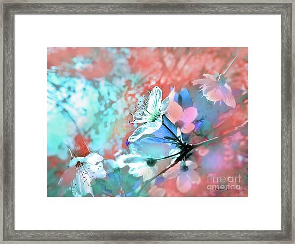 Adios Primavera Framed Print