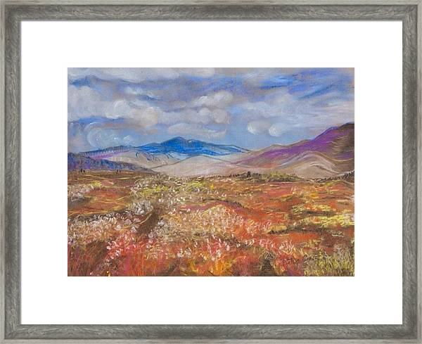 Alaskan Meadow Framed Print