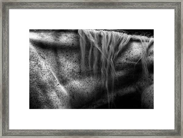 Angel On Leisure Lane Framed Print