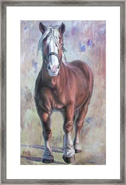 Arthur The Belgian Horse Framed Print