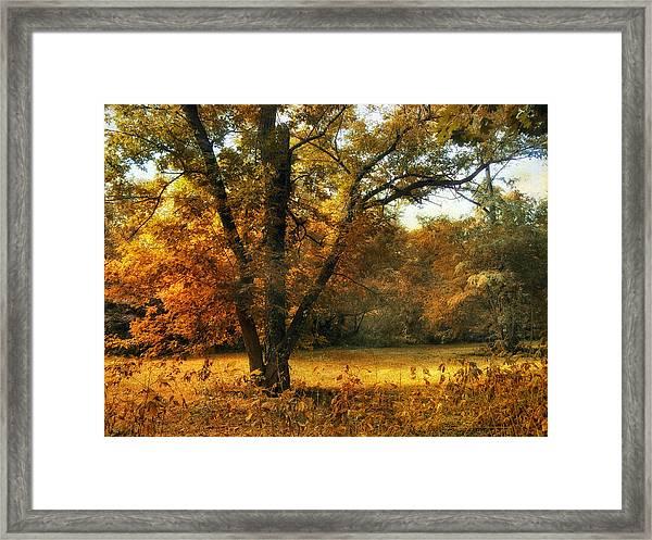 Autumn Arises Framed Print