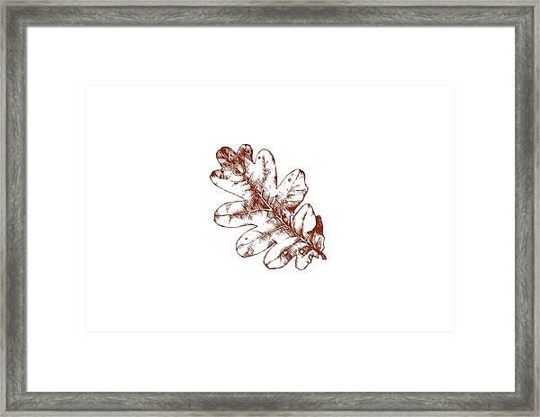 Autumn Day Framed Print