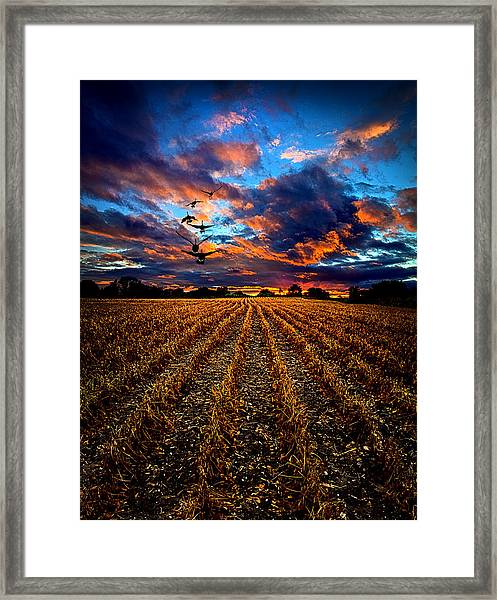 Autumn Rising Framed Print
