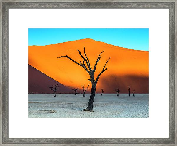Beauty Lives Forever. Framed Print