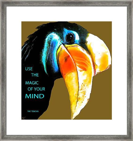 Believe Toucan Framed Print by Debra     Vatalaro