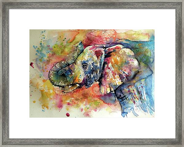 Big Colorful Elephant Framed Print