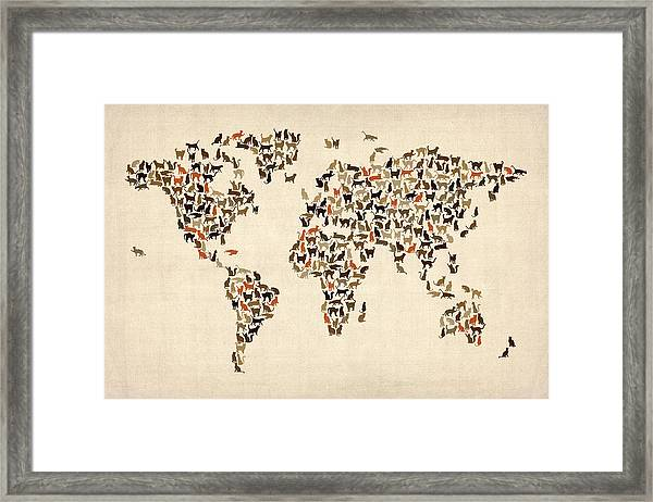 Cats Map Of The World Map Framed Print