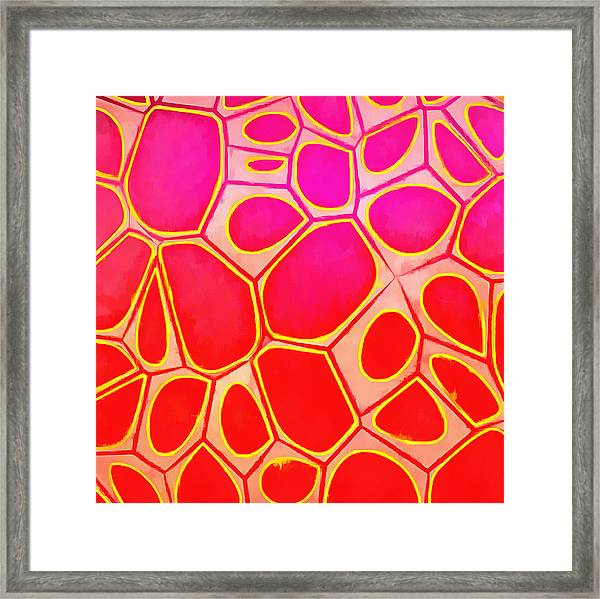 Cells Abstract Three Framed Print