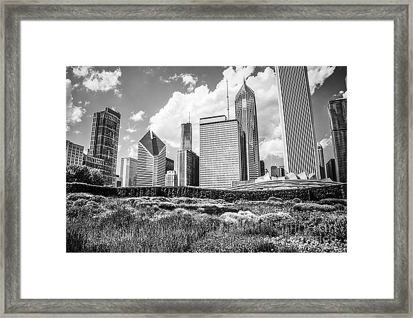 Chicago Skyline At Lurie Garden Black And White Photo Framed Print