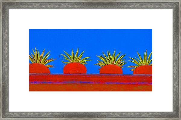 Colorful Potted Plants Mexico Framed Print