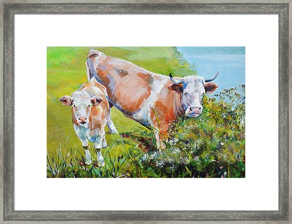 Cow And Calf Painting Framed Print