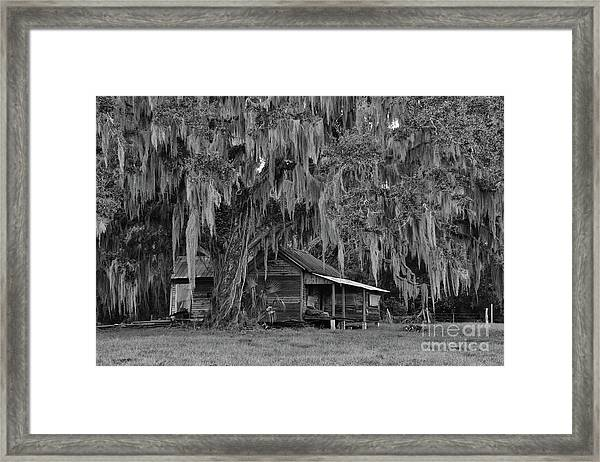 Cracker House Framed Print