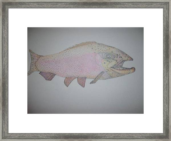 Cutt Throat Trout Framed Print