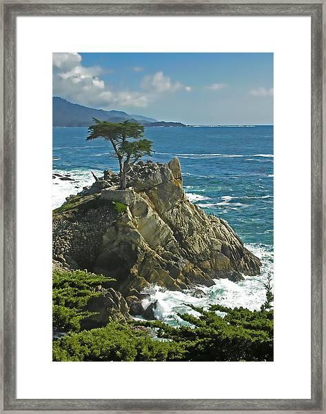 Cypress Point Ll Framed Print